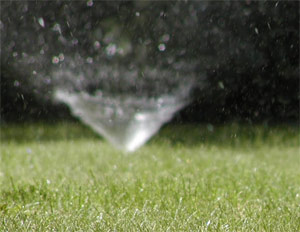 a recently calibrated sprinkler on a green lawn